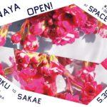 """花を愛でるように写真を楽しむ、「HANAYA(花屋)」 ~ビジュアルのアマナが提案する、新たな""""花屋""""体験~"""